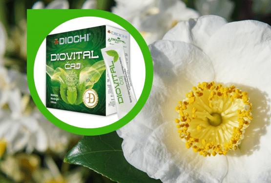 Diovital Matcha Caj 555x375